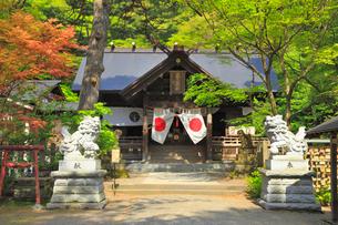 春日山城跡・春日山神社の写真素材 [FYI01793024]