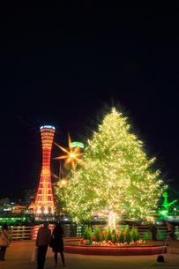ポートタワーとクリスマスツリーのイルミネーションの写真素材 [FYI01793043]