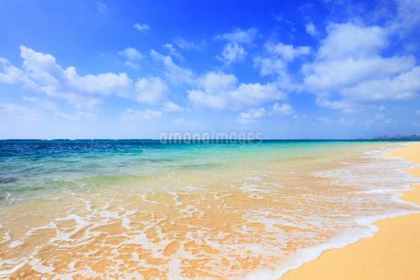 沖縄・石垣島 サンセットビーチの写真素材 [FYI01793156]