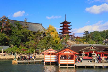 宮島 厳島神社と五重塔の写真素材 [FYI01793235]