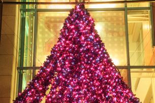 クリスマスツリーのイルミネーションの写真素材 [FYI01793252]