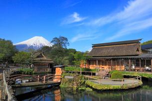 忍野八海と富士山の写真素材 [FYI01793466]