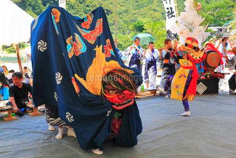 河内祭りの獅子舞の写真素材 [FYI01793490]