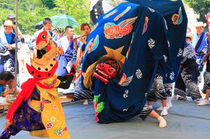 河内祭りの獅子舞の写真素材 [FYI01793543]