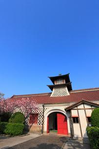 旧新潟税関庁舎とサクラの写真素材 [FYI01793612]
