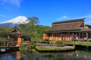 忍野八海と富士山の写真素材 [FYI01793686]
