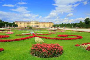 ウィーンのシェーンブルン宮殿の写真素材 [FYI01793704]
