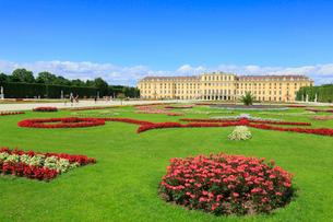 ウィーンのシェーンブルン宮殿の写真素材 [FYI01793809]