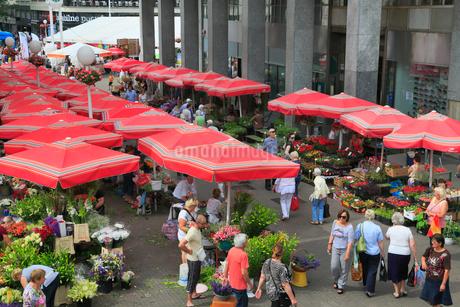 ザグレブの青果市場の写真素材 [FYI01793879]