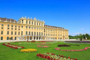 ウィーンのシェーンブルン宮殿の写真素材 [FYI01793954]