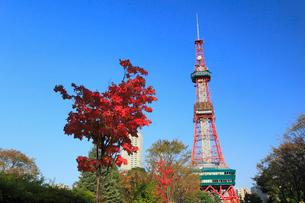 さっぽろテレビ塔と紅葉の写真素材 [FYI01794122]