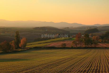 三愛の丘展望台から望む夕焼けの丘の写真素材 [FYI01794123]