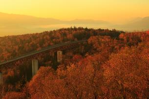 三国峠から望む松見大橋と紅葉に朝焼けの写真素材 [FYI01794204]
