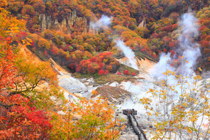 登別・地獄谷の紅葉の写真素材 [FYI01794267]