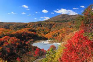 登別・大湯沼の紅葉の写真素材 [FYI01794277]