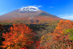岩手山と焼走り溶岩流に紅葉の写真素材 [FYI01794295]
