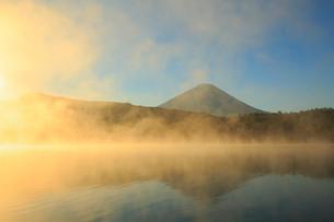 朝日に染まる雲海 富士山と西湖の写真素材 [FYI01794340]