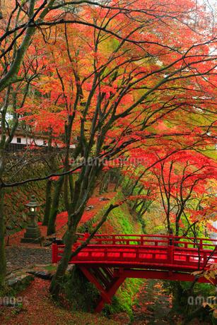 両界山横蔵寺の紅葉の写真素材 [FYI01794366]