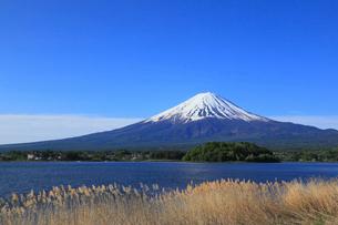 河口湖畔の大石公園から望む富士山の写真素材 [FYI01794370]