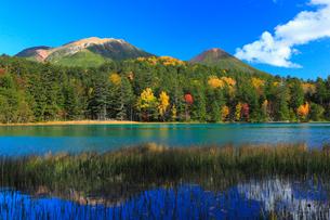 オンネトー湖と阿寒岳に紅葉の写真素材 [FYI01794392]