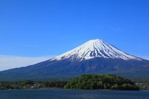 河口湖畔の大石公園から望む富士山の写真素材 [FYI01794429]