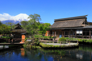 忍野八海・湧池から望む富士山の写真素材 [FYI01794506]