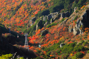 小豆島・寒霞渓の紅葉と寒霞渓ロープウェイの写真素材 [FYI01794509]