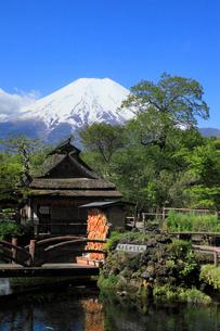 忍野八海・湧池から望む富士山の写真素材 [FYI01794557]