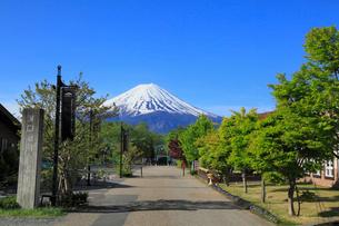 河口湖畔から望む富士山の写真素材 [FYI01794597]