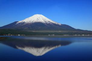 山中湖畔から望む富士山の写真素材 [FYI01794641]