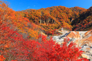 登別・地獄谷の紅葉の写真素材 [FYI01794682]