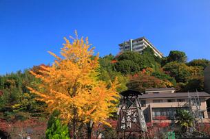 有馬温泉の紅葉の写真素材 [FYI01794743]