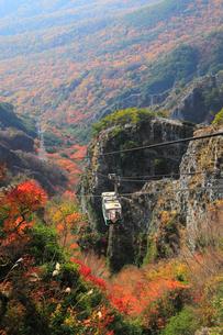 小豆島・寒霞渓の紅葉と寒霞渓ロープウェイの写真素材 [FYI01794904]