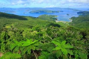 奄美大島 高知山展望台より望む大島海峡と加計呂麻島の写真素材 [FYI01794910]