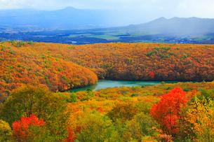 八幡平アスピーテライン 大沼と紅葉の写真素材 [FYI01794911]