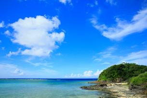 奄美大島 あやまる岬の写真素材 [FYI01794967]