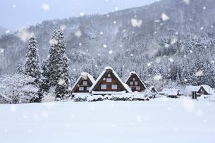 雪景色の白川郷・上町地区の写真素材 [FYI01795058]