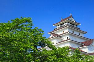 鶴ヶ城と新緑の写真素材 [FYI01795072]