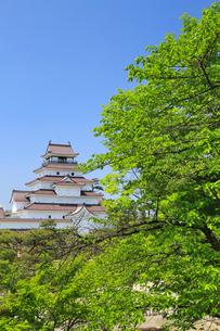 鶴ヶ城と新緑の写真素材 [FYI01795139]