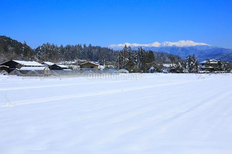 冠雪の北アルプスと里の景色の写真素材 [FYI01795151]