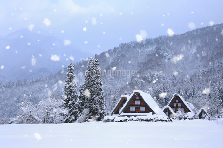 雪景色の白川郷・上町地区の写真素材 [FYI01795165]