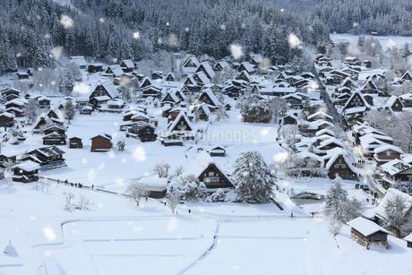 天守閣展望台から望む雪景色の白川郷の写真素材 [FYI01795179]