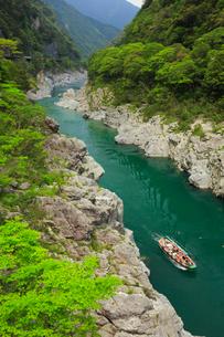 大歩危峡と遊覧船の写真素材 [FYI01795480]