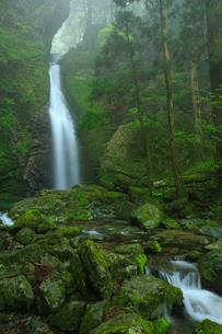 龍王の滝の写真素材 [FYI01795510]