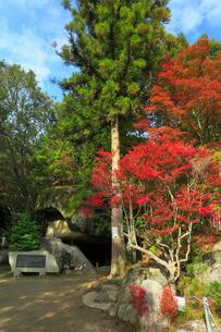 岩屋堂公園の祠と紅葉の写真素材 [FYI01795570]