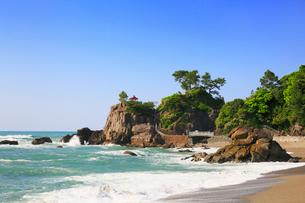 桂浜の写真素材 [FYI01795600]