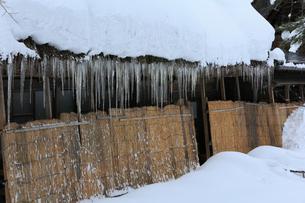 雪景色の白川郷  軒先のつららと雪除けの写真素材 [FYI01795601]