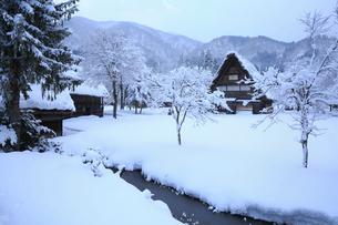 雪景色の白川郷 野外博物館・合掌造り民家園の写真素材 [FYI01795732]