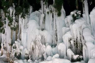 福地温泉・冬の風物詩 青だるのライトアップ夜景の写真素材 [FYI01795764]