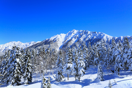 西穂高口駅屋上展望台から望む雪景色の北アルプスの写真素材 [FYI01795768]